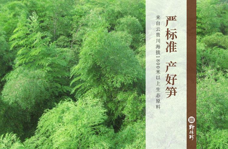 竹笋食品厂家